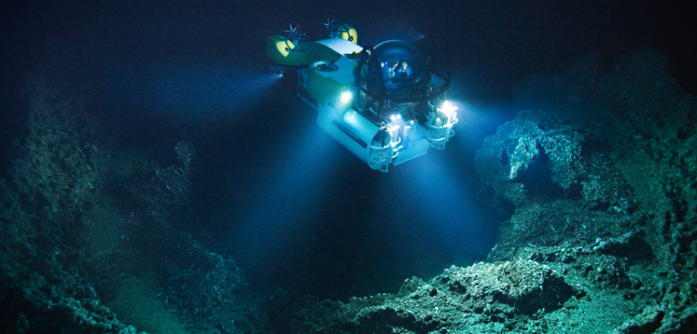 8 of the Coolest Inhabitants of the Mariana Trench